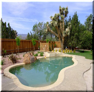 Backyard Pool Garden