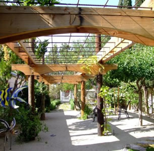 Cool Arbor Backyard